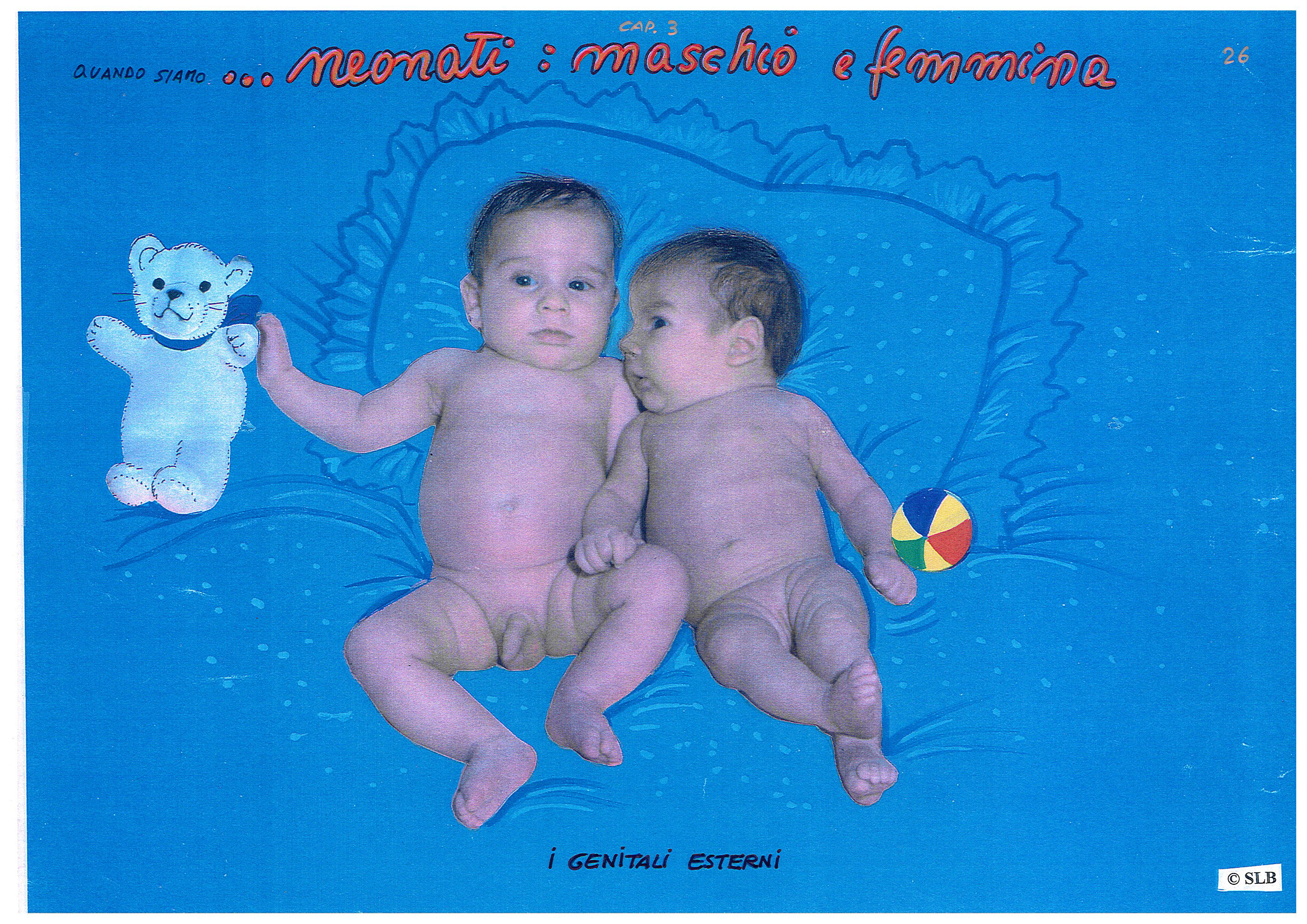 Quando Siamo Neonati Il Maschio La Femmina E I Genitali Esterni